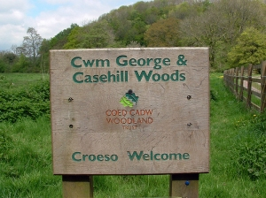 Dinas Powys Woodland Trust