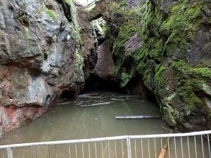 Wenallt disused slide pit in Fforest Fawr