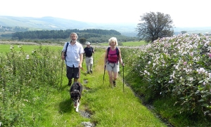 Mynydd Margam walk