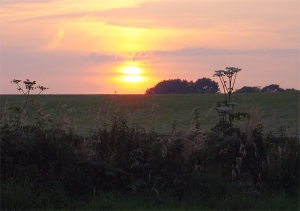 sunset across Burdonshill