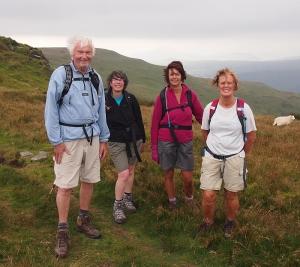 Windswept group