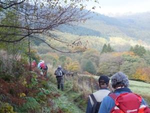 Sirhowy Valley autumnal tints