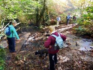 Cefn Onn walk crossing the brook