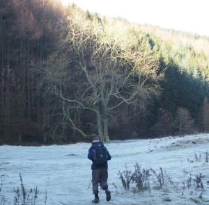 grwyne fawr valley frost