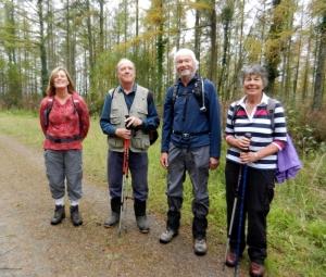 The quartet on the Penllergaer walk
