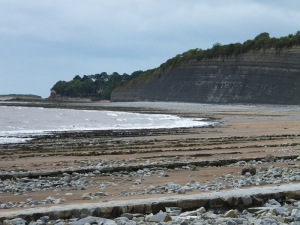 Lavernock beach showing the Jurassic cliffs (not taken on the day)