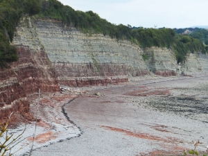 Showing the Triassic cliffs at Penarth top (not taken on the day)