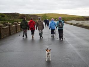 Walking Cold Knap promenade