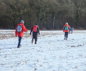 Crossing snowy meadows to West Hill Wood