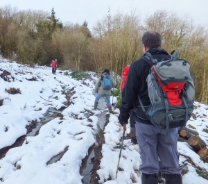 Snow, ice and mud in Leckwith Wood