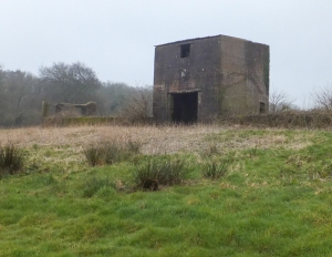 Ruins of the old piggery