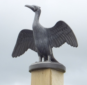 The wooden Cormorant