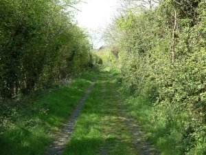 Lavenock Searchlight Lane