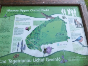 Wenvoe information board in community nature reserve