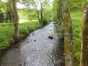Sugar Loaf the Grwyne Fawr River