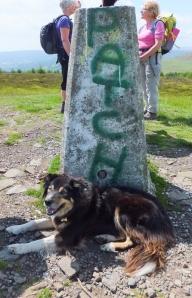 Mynydd Machen Patch at the trig point