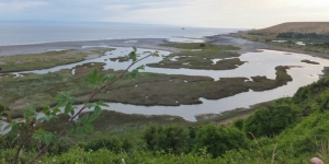 Salt Flats at Pleasant Harbour