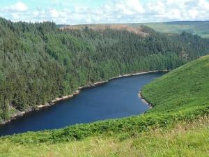 Afon Camddwr on its way to Llyn Brianne