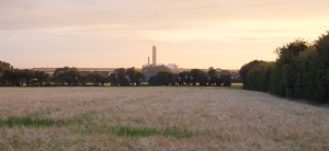 Sun setting over barley fields and the power station