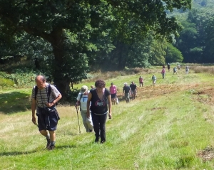 Garth Hill field climbing Nantcwmllwydrew