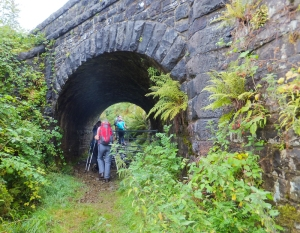 Beneath the Brecon Mountain Railway bridge