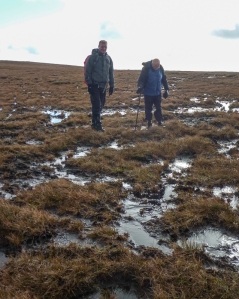 Boggy Conditions