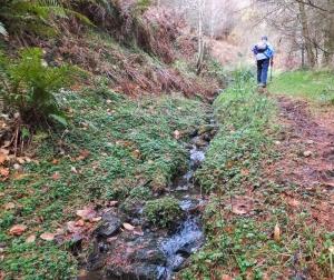 Climbing beside a pretty little brook Craig y Glyn