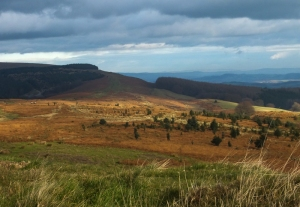 Looking back across Mynydd Henllys