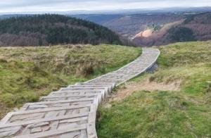 New steps leading down off Twmbarlwm