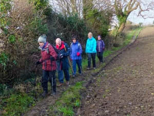 Concentrating on muddy paths on the way to Lavernock nature reserve