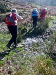 Tramping muddy paths
