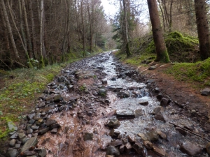 Watery lane leading uphill