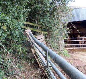 Blocked narrow path at Pant-yr-eos farm