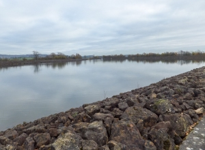 Still reservoir