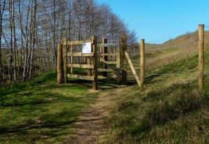 New gates on moorland by Merthyr Mawr Warren
