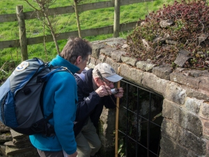 Tasting the waters - St Cybi's Well