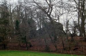Gazing back at remnants of Tregrug castle