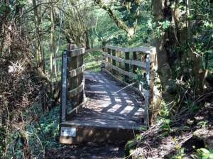 New steps leading to ridgeway