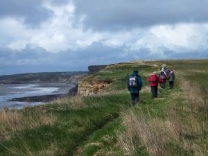Clifftop looking towards Trwyn y Witch