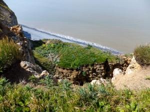 Cliff fall abover Traeth Mawr