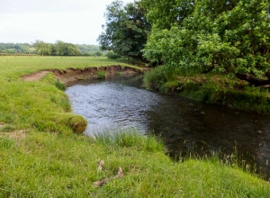 River Waycock