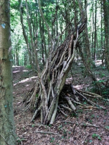 Shelter in Park Wood