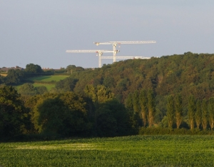 Cranes at Llandough