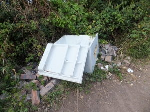 Rubbish dumped on path to The Lawns