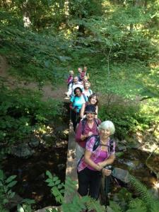 Footbridge at Horner Water