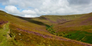 Slopes of Waun Fach