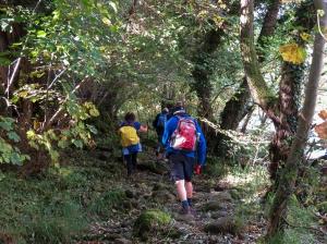 slippery path beside River Usk