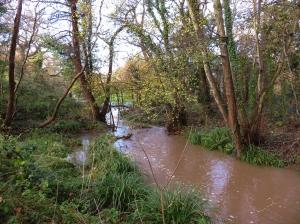 Swollen Cadoxton River