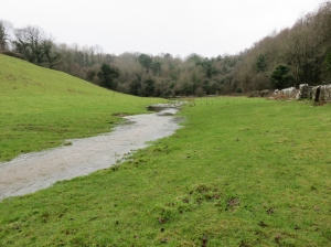 Misfit stream near Candleston Farm