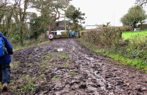 Mud approaching Ysguborgoch Farm